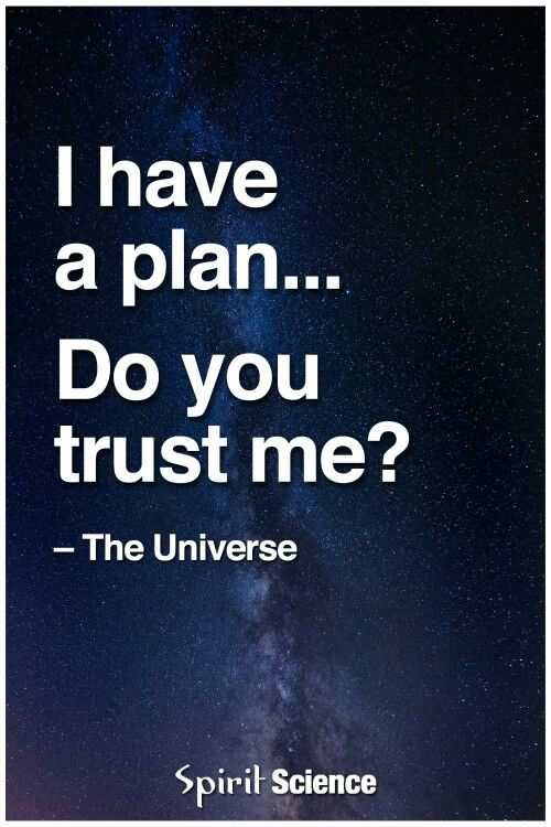 Image result for i have a plan do you trust me universe