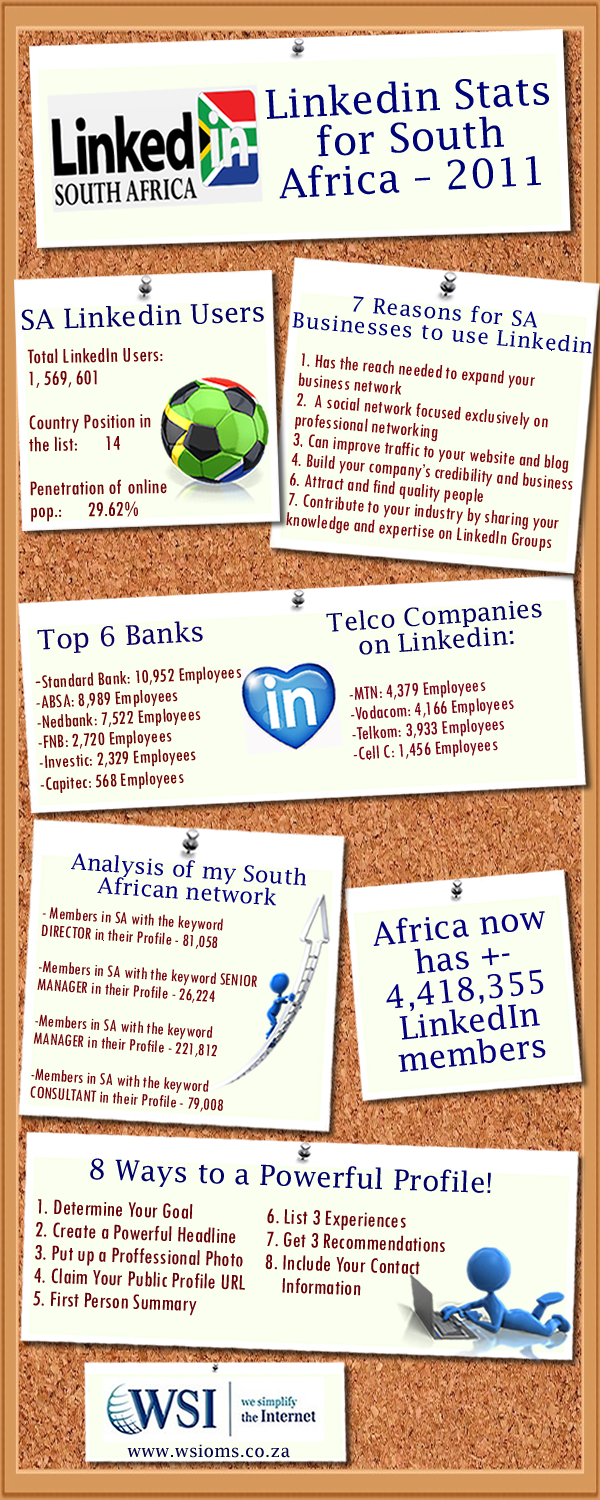 LinkedIn Stats for South Africa 2011 Infographic