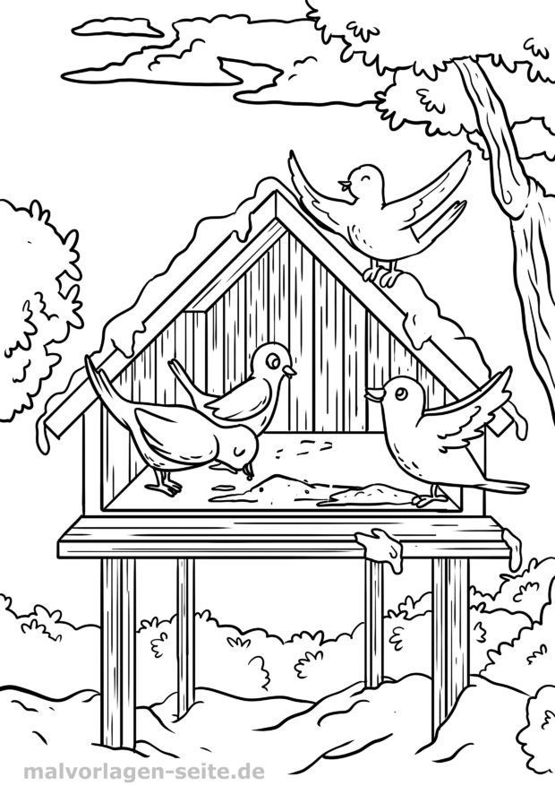 malvorlage vogel im winter vogelhäuschen  vögel im winter