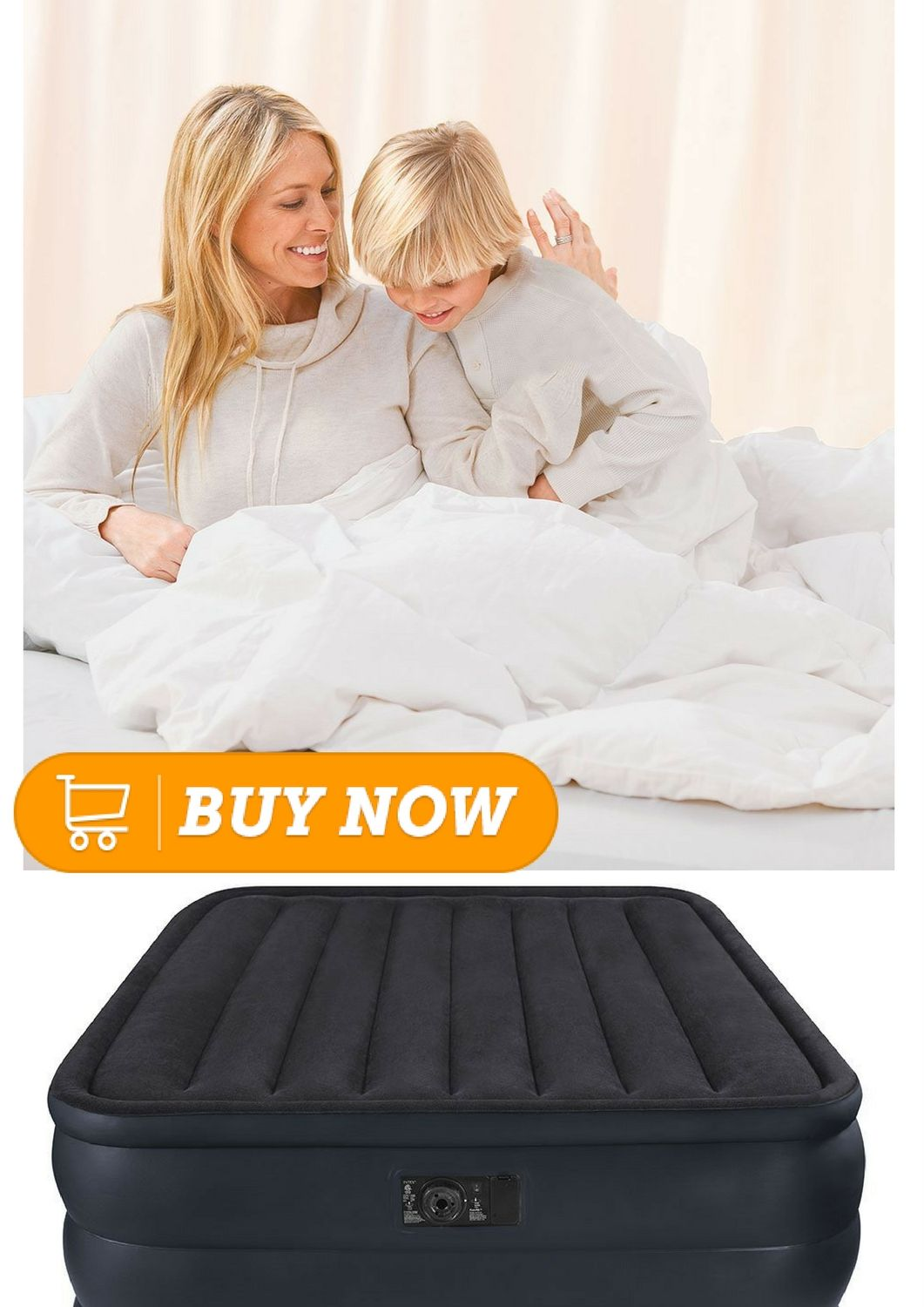 Intex Raised Downy Airbed with Built-in Electric Pump ...