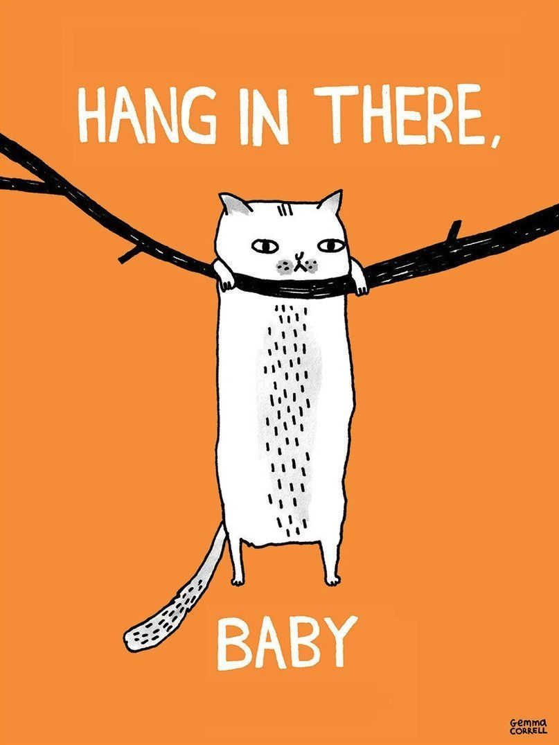 Gemma Correll Hang In There Baby Funny Illustration Cats Illustration