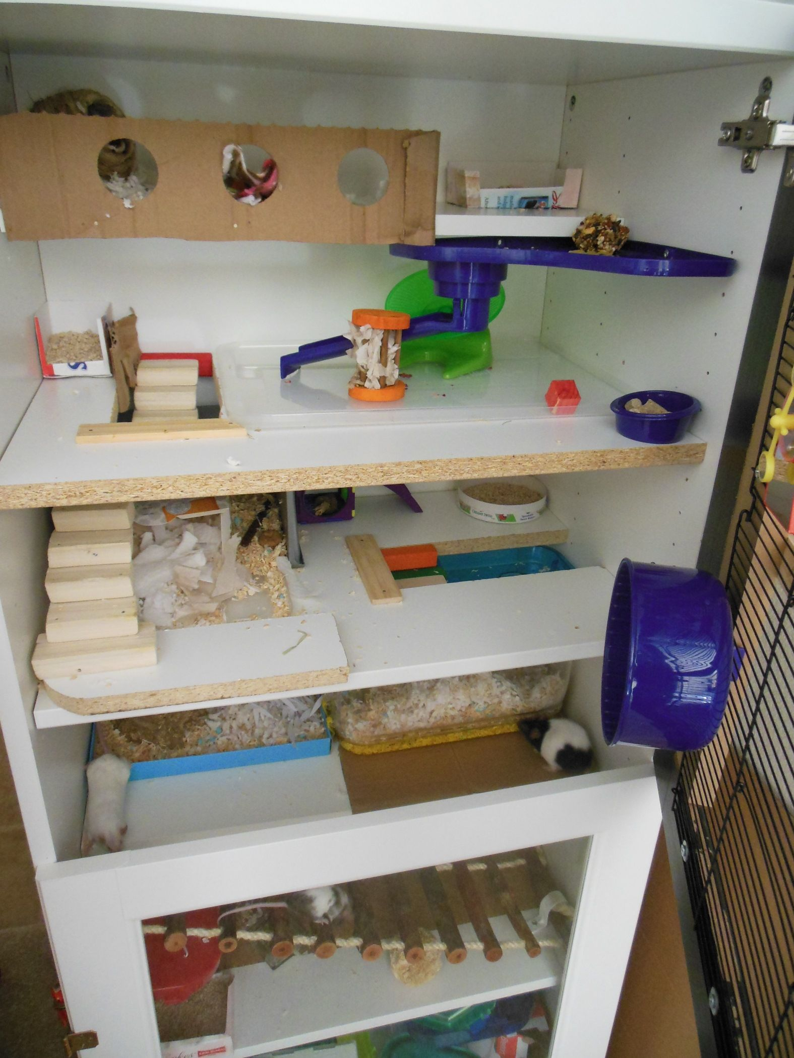 half shelf built thrifty wall ins in img bookcase chick decor from