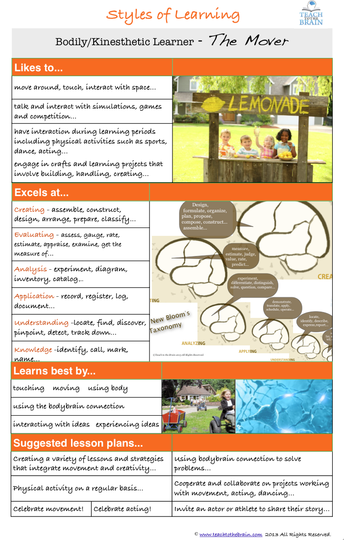 auditory learning style essay
