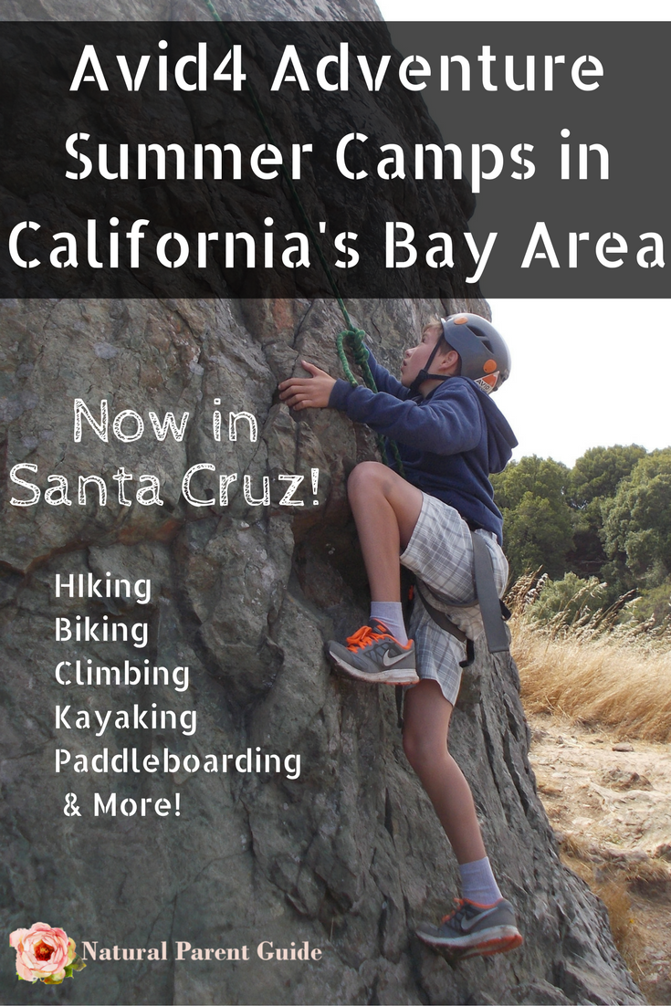 e85035993a New Adventure Camp in Santa Cruz and CA Bay Area locations  Avid4Adventure  Adventure Camps Sports camp Summer Activities ad