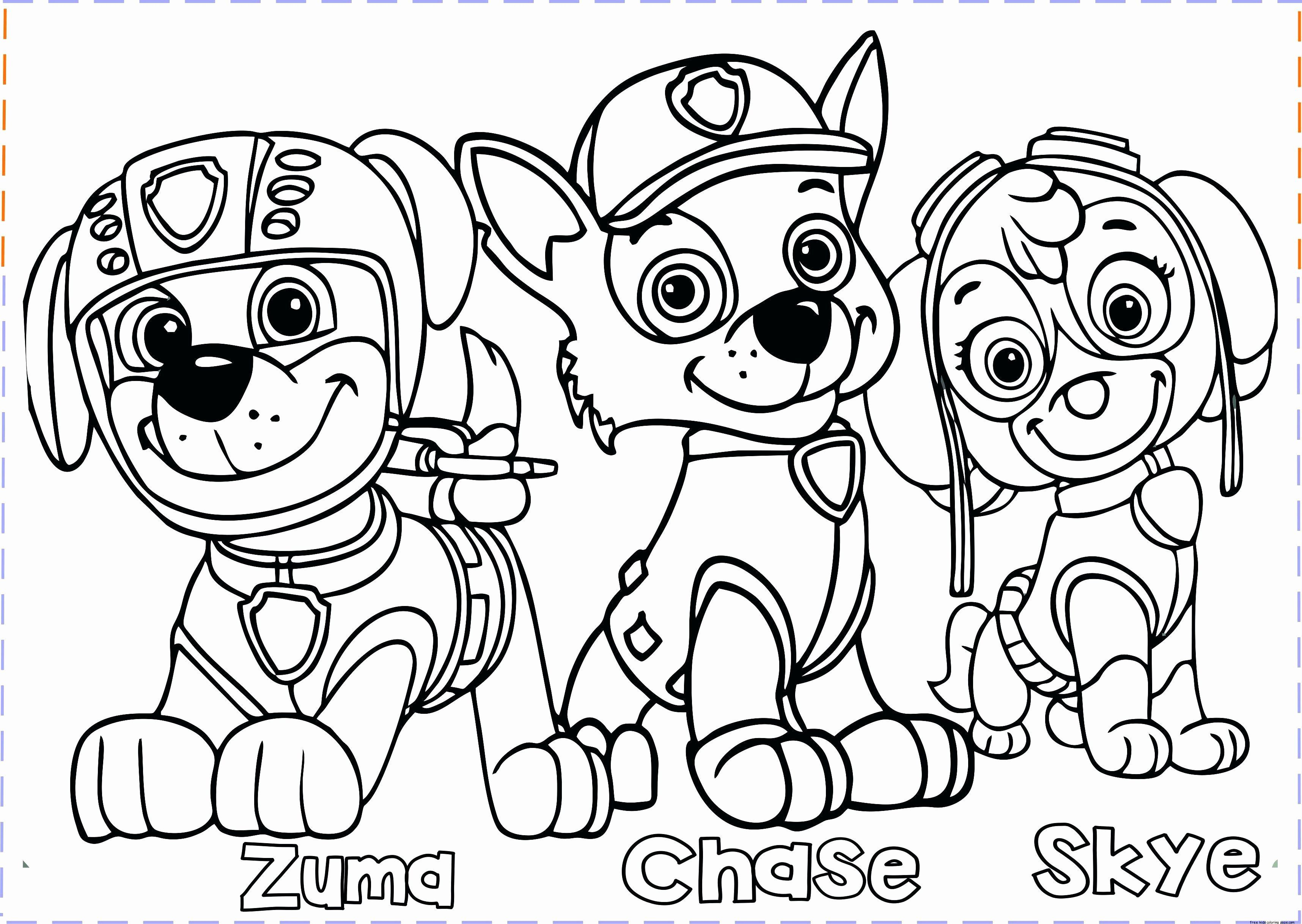 Paw Patrol Coloring Page Awesome Paw Patrol Coloring Pages For