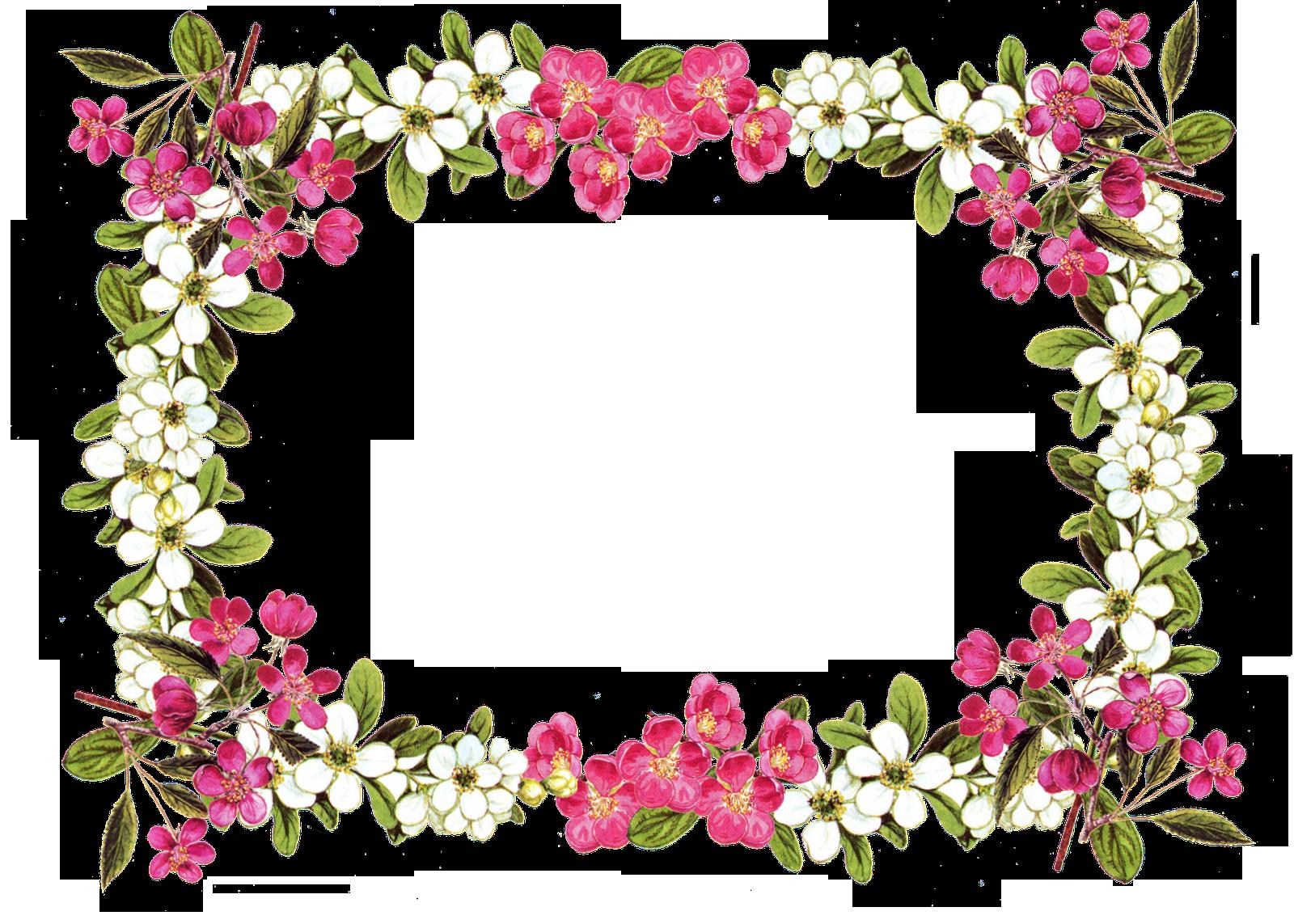 free digital flower frame png in vintage design