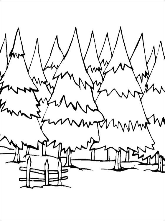 Winter Forest Coloring Page Coloring Pages Coloring 3