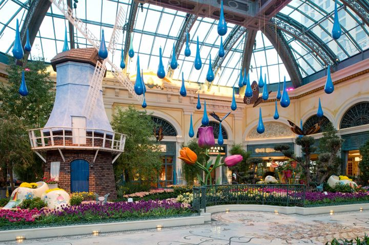 Visit the Bellagio's Conservatory & Botanical Gardens through May 11 to enjoy their spring display!