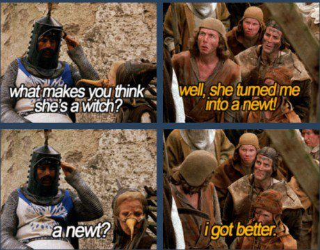 Image result for monty python and the holy grail memes | She's a witch,  Science nature, Monty python