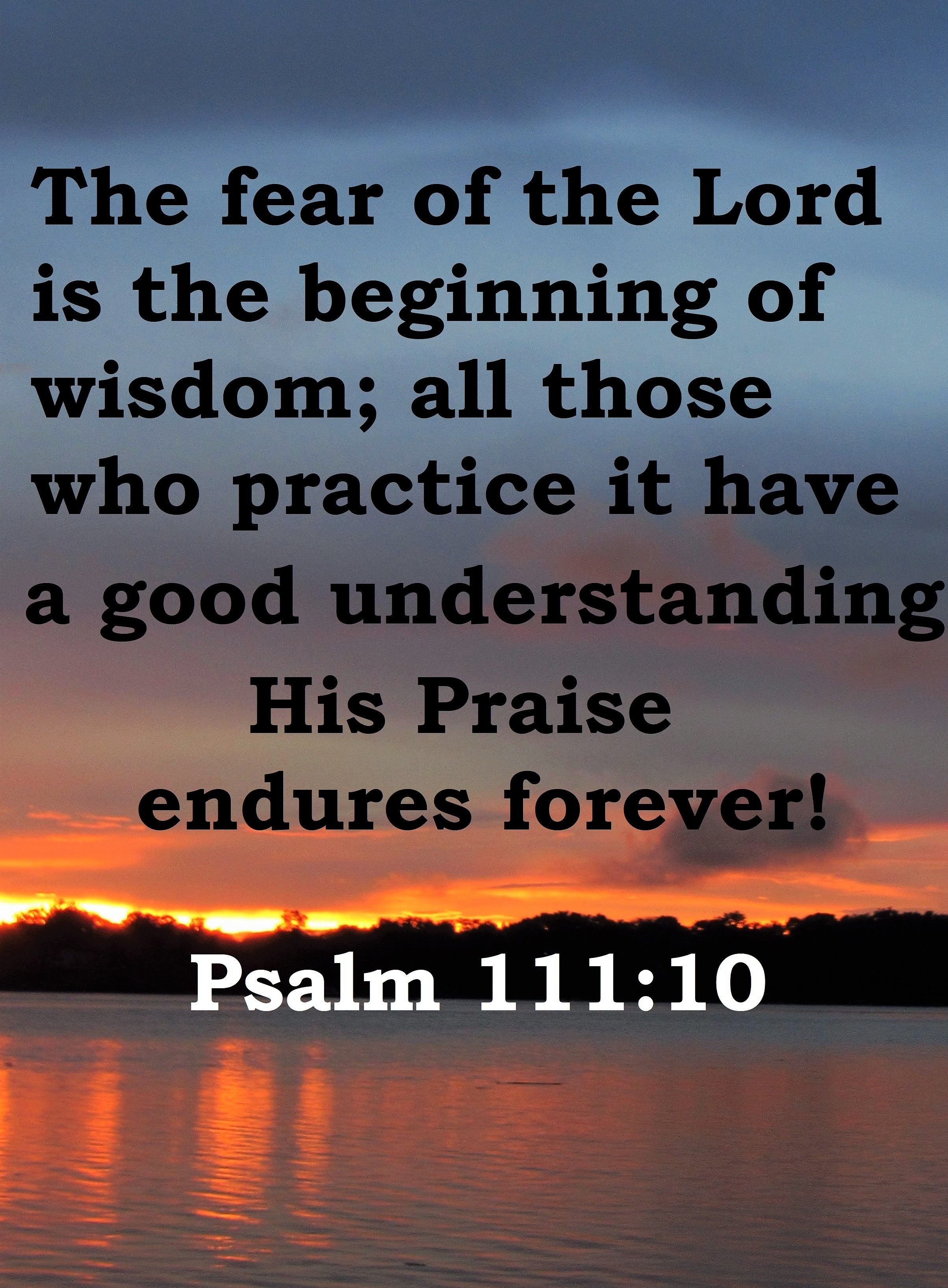 Psalm 111:10 Fear of the Lord is the beginning of wisdom. | Fear ...