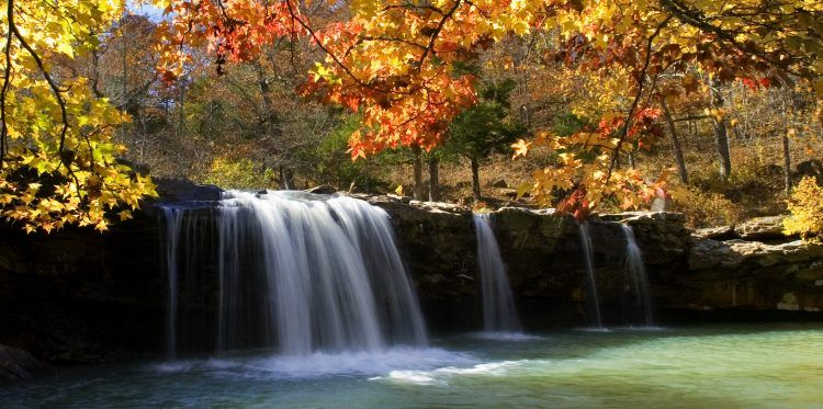 Ozark National Forest Camping Guide from Local Experts