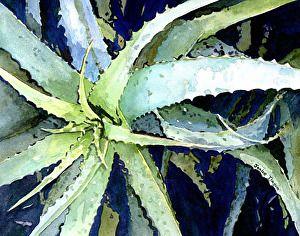 """Cactus Colors"" by Janice Tingum. http://janicetingum.com"