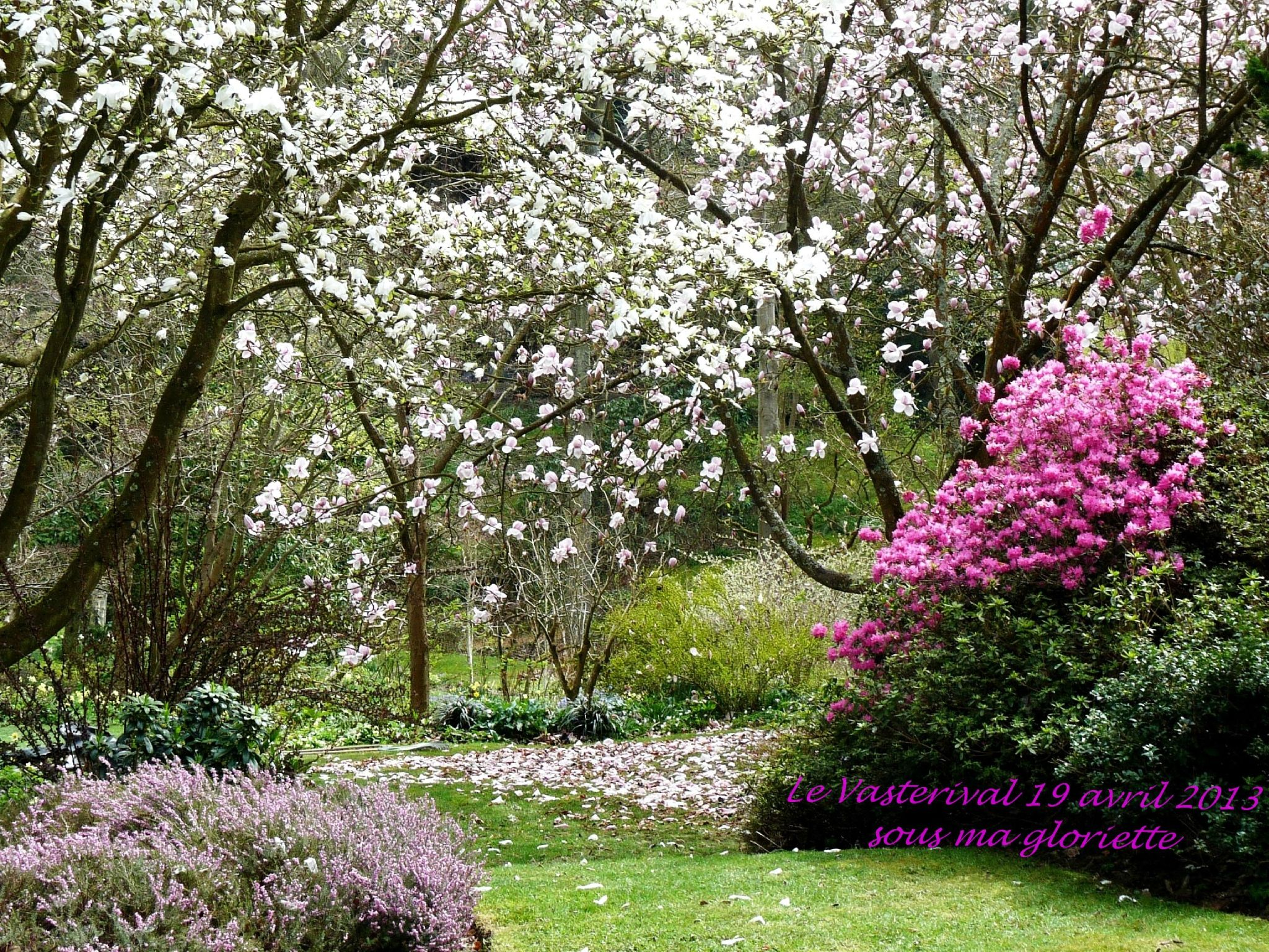Mon Jardin En Avril vasterival au printemps | garten deko, blumen