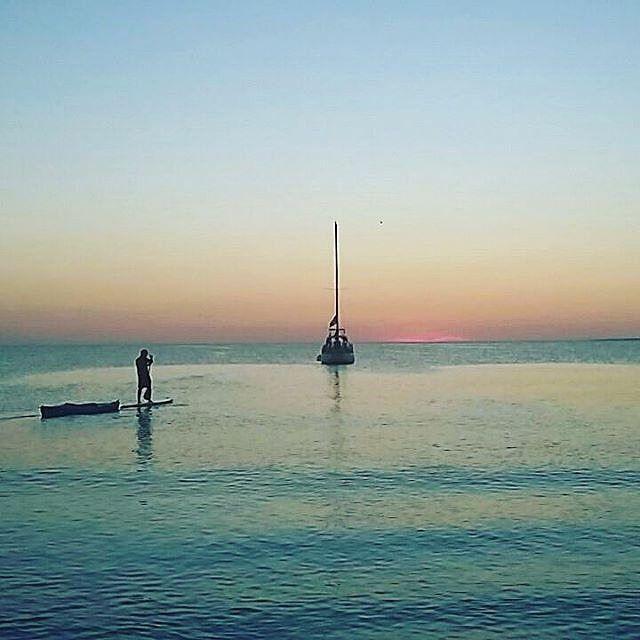 @Regrann from @diversionyturismoisladecoche -  Atardecer en playa la punta isla de coche tenemos para ti lo mejor de lo mejor claces de paddle surf paseo en kayak paseo en velero en el atardecer clases de wuinsurf y triciclos a vela. te esperamos contactanos personalmente busca los kayak azul o el paddler suf y pregunta por Aroldo Mata el sera tu guia aventura en estos carnavales 04142413797 #diversionyturismoisladecoche #hotelsunsolpuntablanca #hotelcocheparadise #catamaranesdelcaribe…