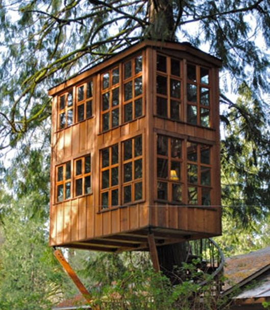 Treehouse Masters Treehouse Point: Animal Planet To Premiere TREEHOUSE MASTERS, 5/31