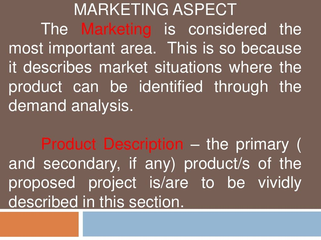 Feasibility Study: Marketing , Technical and Management Aspect by