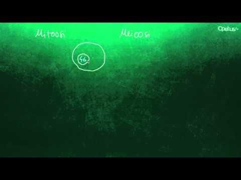 Ihminen koostuu soluista (yläkoulu) - YouTube