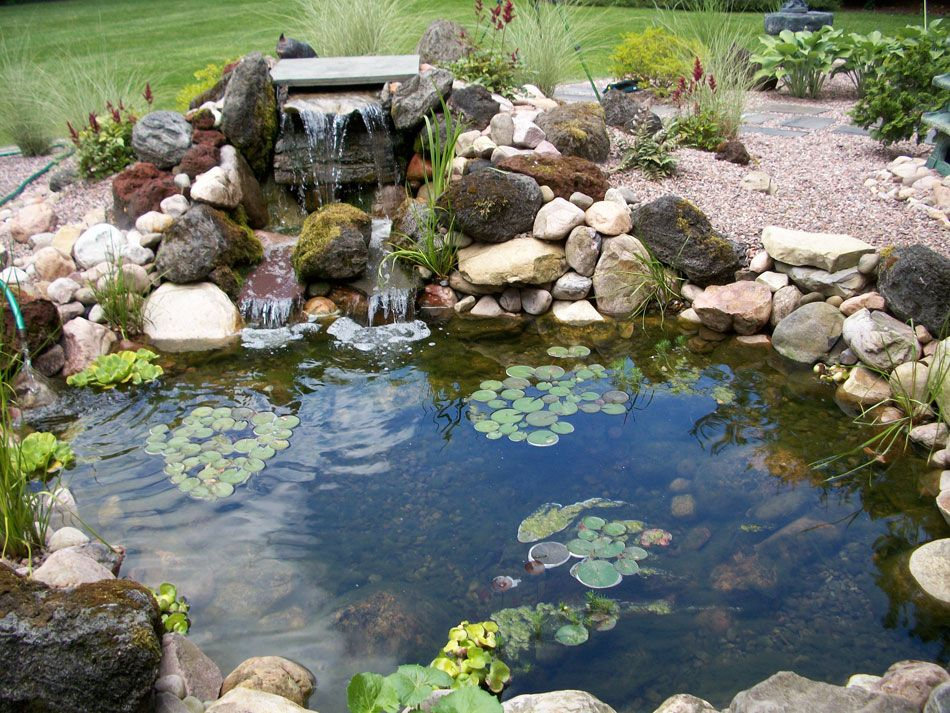 Gardening ideas google 39 da ara gardening ideas for Fish pond waterfall