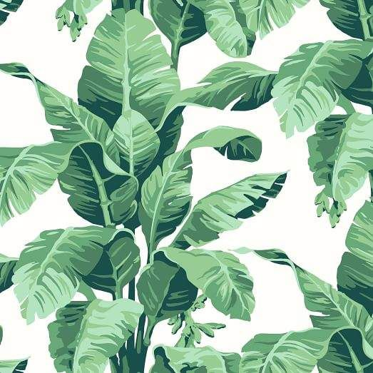 west elm Wallshoppe Tropical Leaf Print Wallpaper