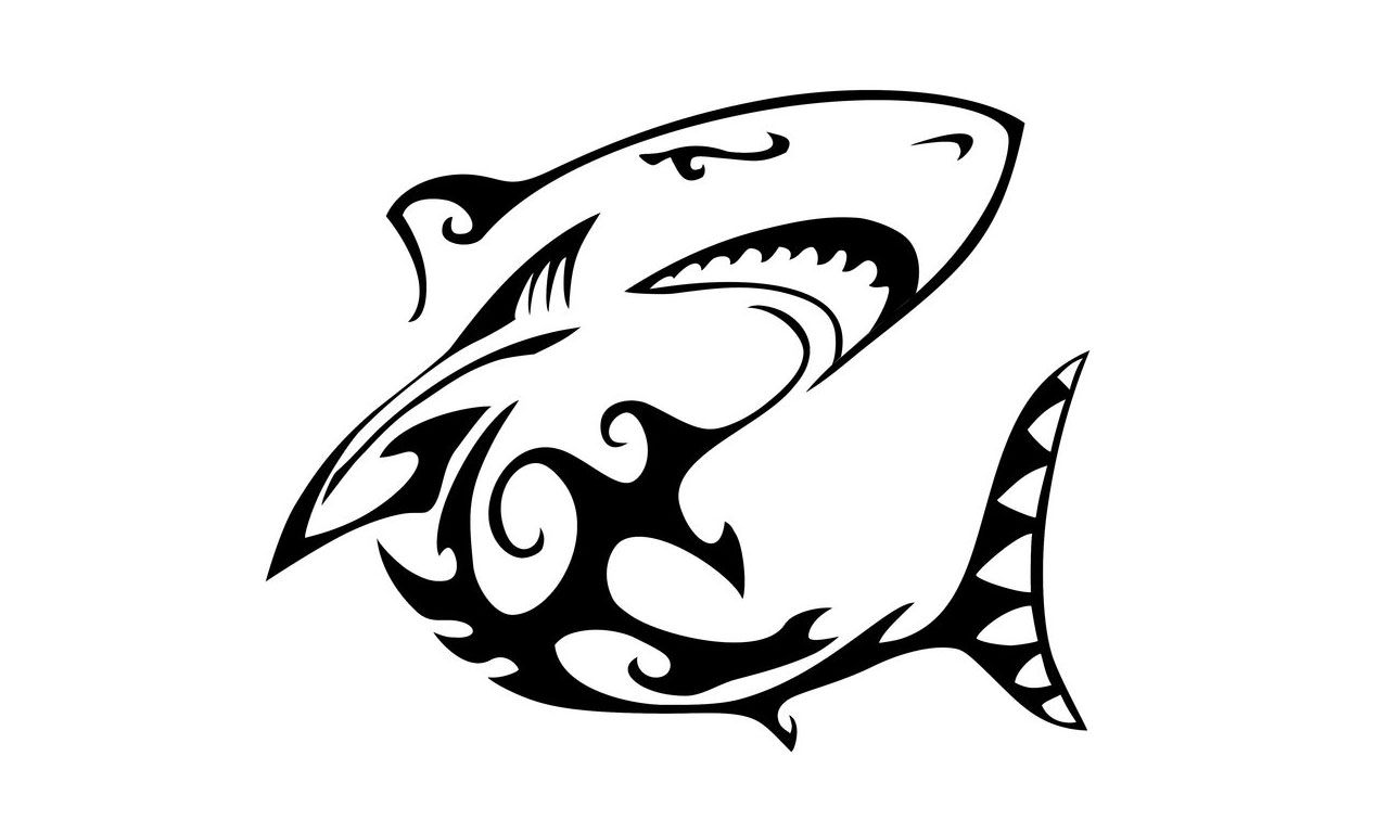It's just a photo of Sweet Shark Tattoo Drawing