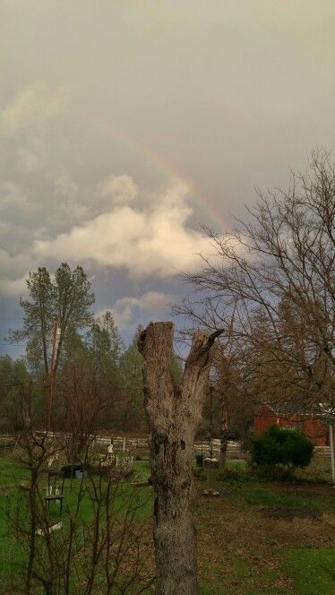 The rainbow, Gods promise to use that He will come back to get His those who love Him