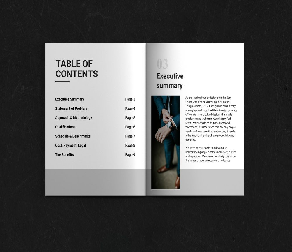 Standard Business Proposal Business Proposal Template