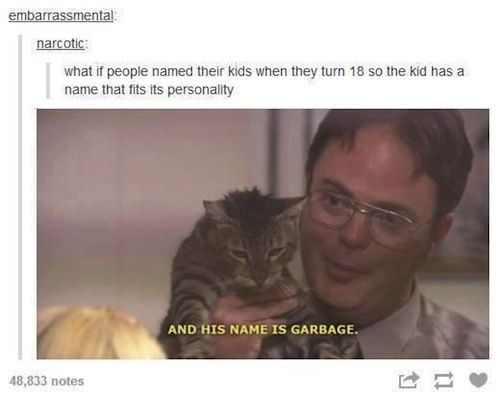 Funny Memes On Tumblr : 26 funny memes that will make your day. late nights times and