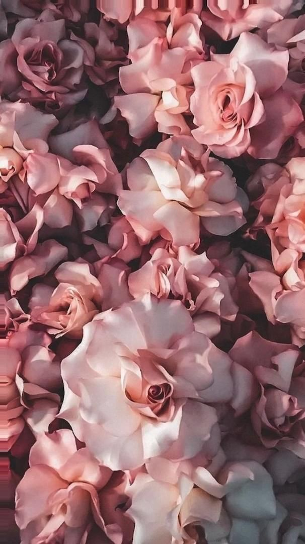 PINK FLOWERS MOTION WALLPAPER