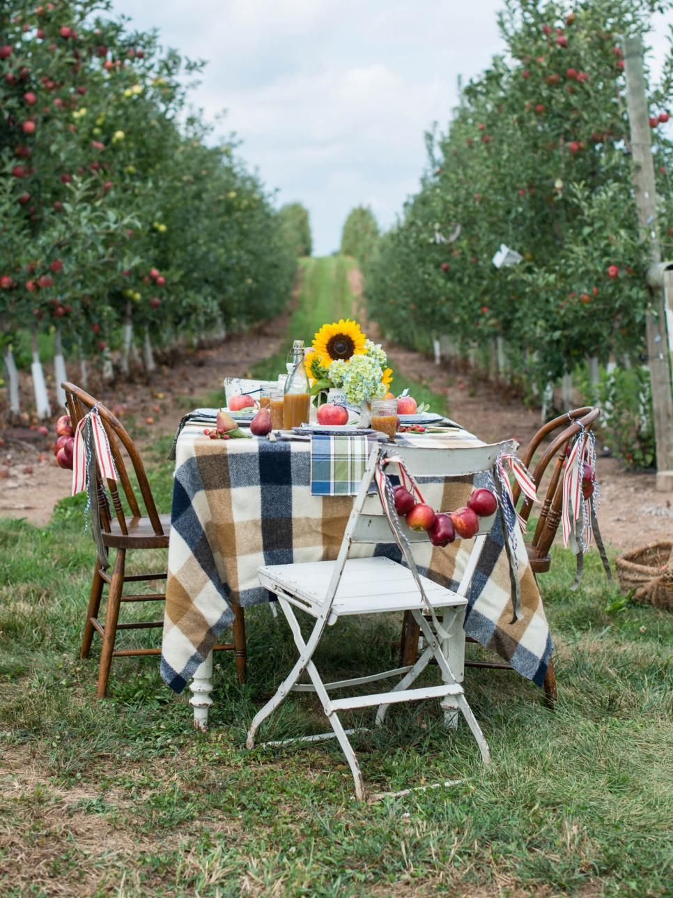 Celebrate Fall With Apple-themed Outdoor