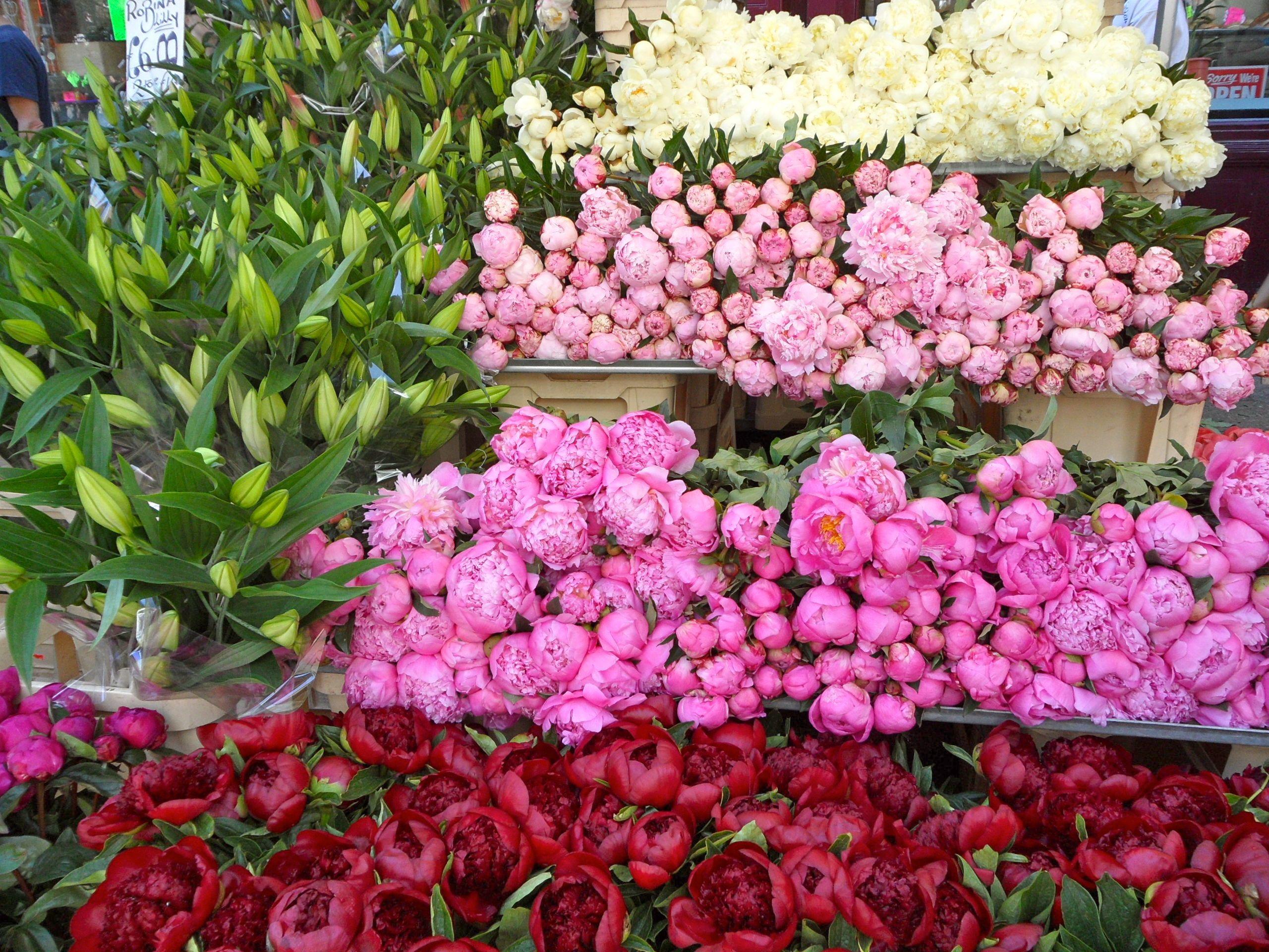 Columbia Flower Market London Flower Market Flower Boutique Flower Garlands