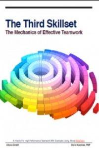 The Third Skillset, by David Kershaw