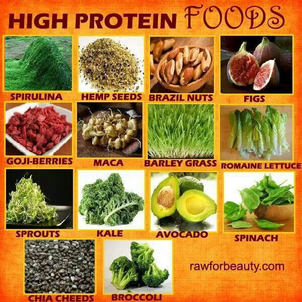HIGH PROTEIN Food For Vegans That Are Worried About A Low Abundance Of Protein In Plant Based Diet