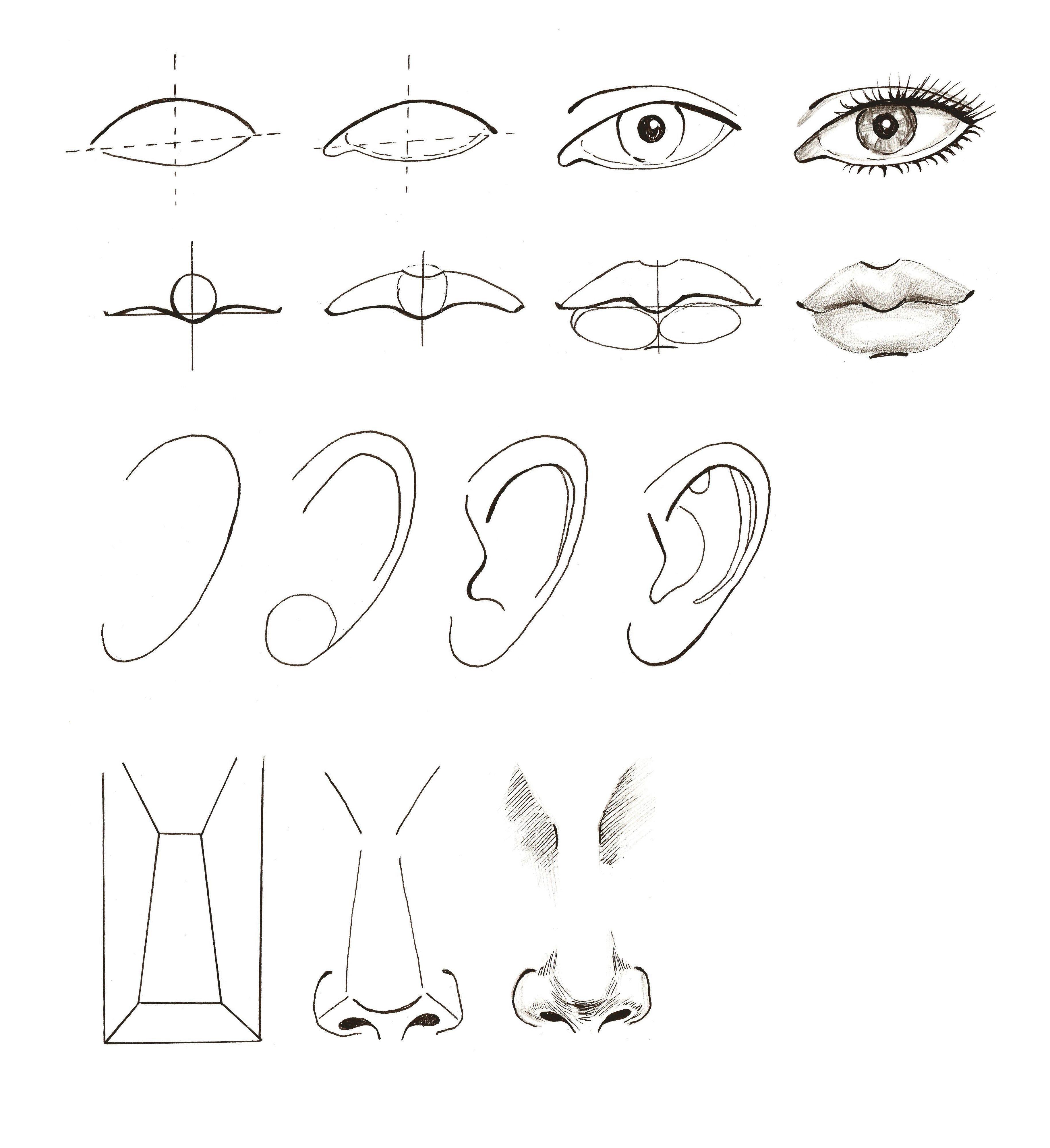 Modul 2 Proporcii Lica Drawings Art Sketches Art Drawings Simple