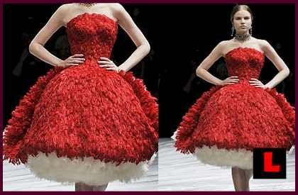 Alexander Mcqueen Feather Wedding Dress With Red Feathers