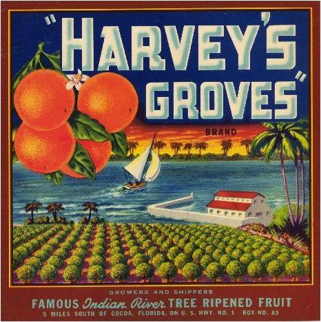 Pasadena California Arroyo Seco Bridge Orange Citrus Fruit Crate Label Art Print