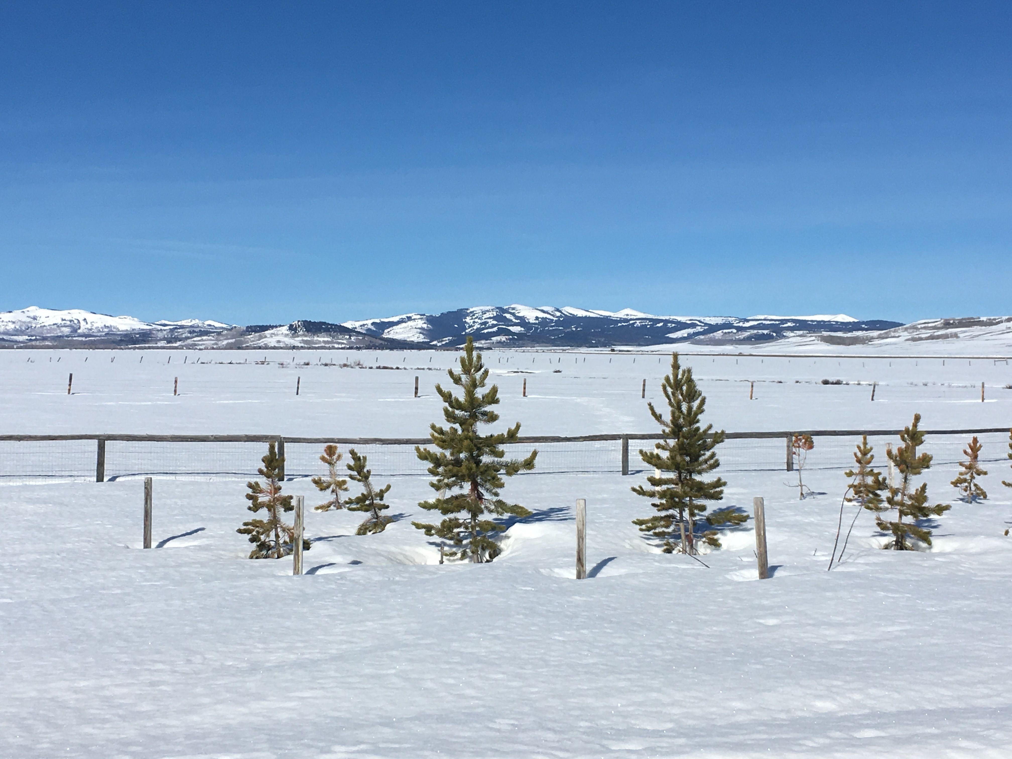 April in Wyoming!