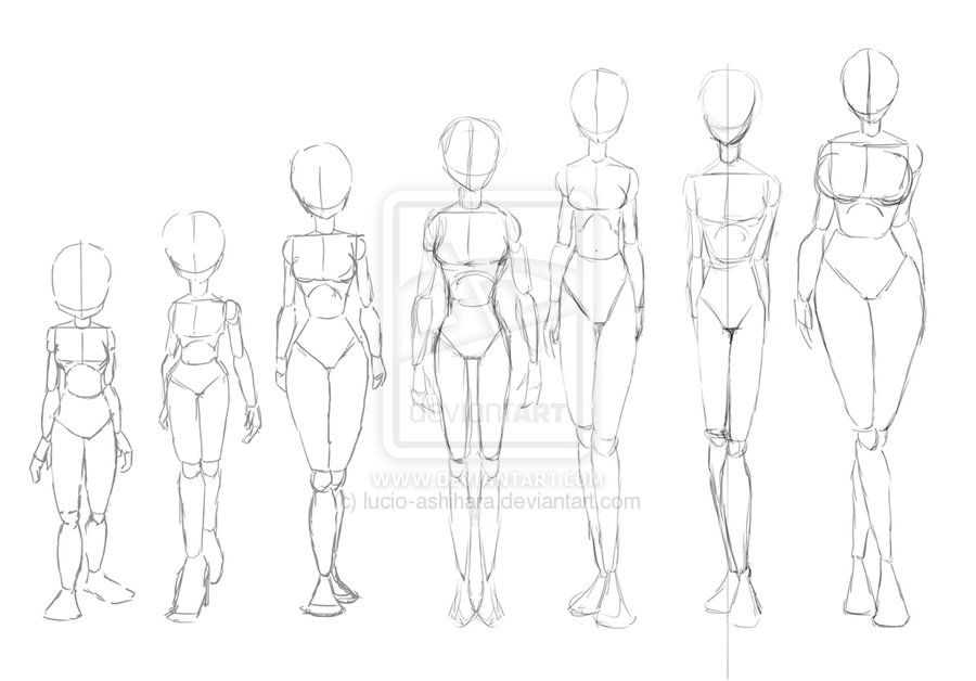 Anime girl body structure