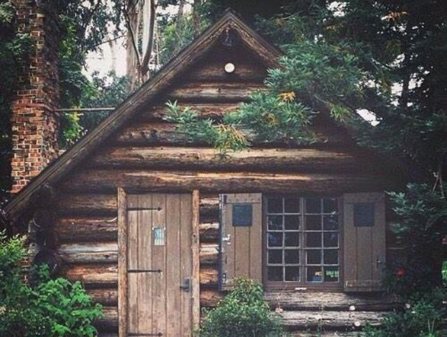 Log Cabin In Woods