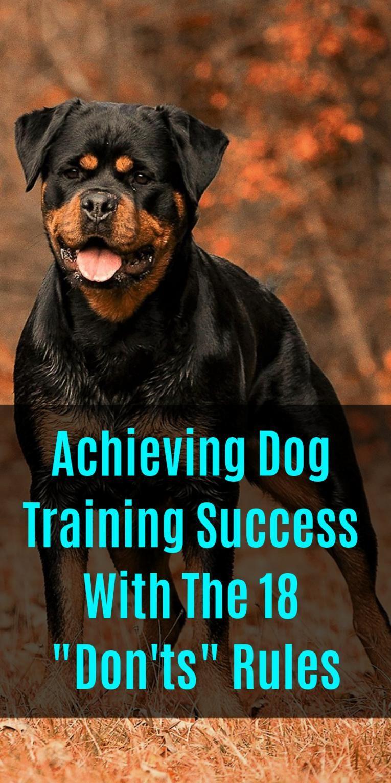 Facebook T Shirt Dog Training Rottweiler Training Dogs