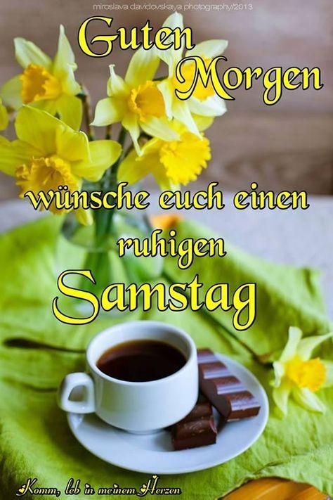 Samstag Gb Pics Kaffeepflanze Guten Morgen Und Samstagsgrüße