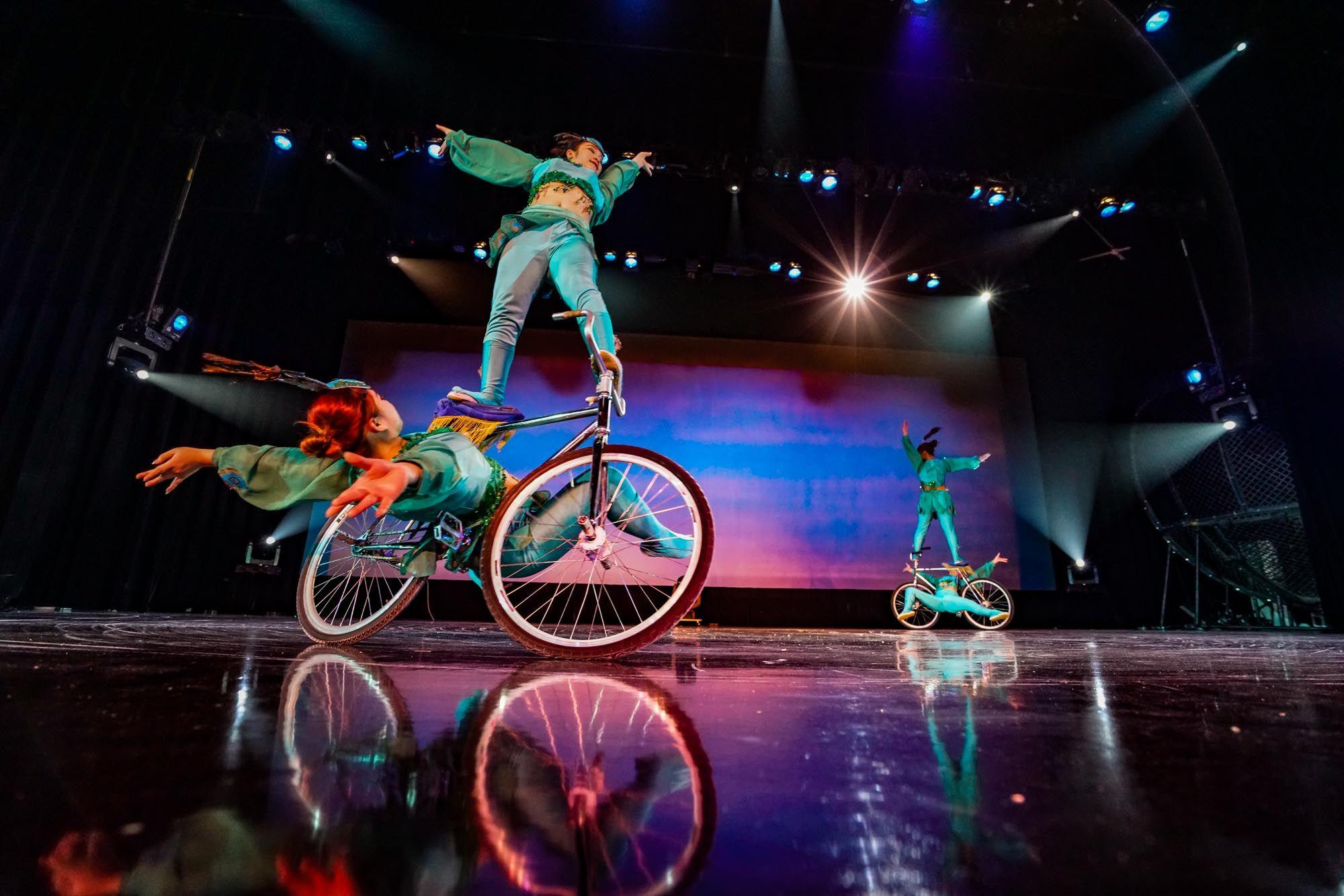 Картинки по запросу circus shanghai site:pinterest.com