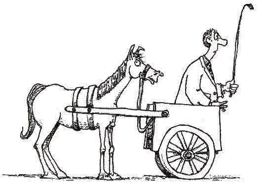 Put The Horse In Front Of The Cart