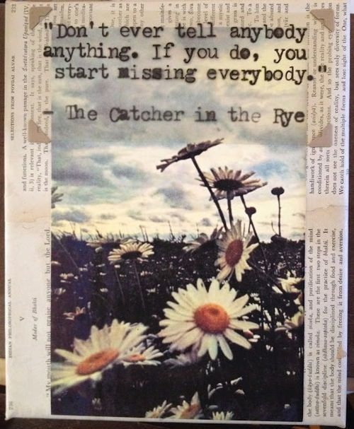 The Catcher In The Rye Salinger's Essay