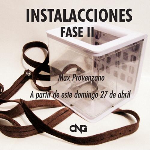 InstalAcciones  Fase II [inflexiones] Organización Nelson Garrido