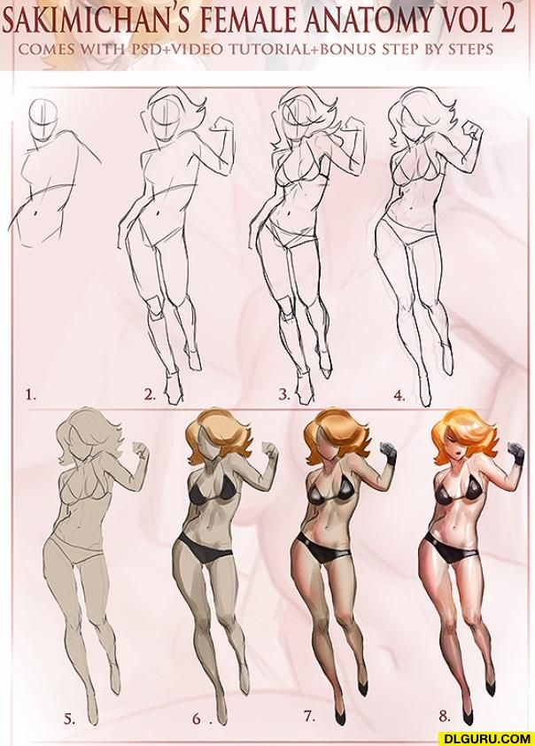 Sakimichan Female Anatomy Vol  2 » Free Direct Links