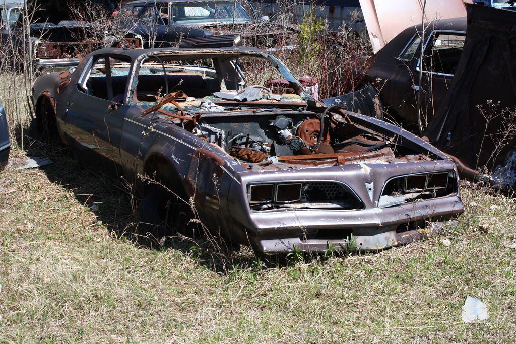 1977 Firebird | junk yard greats/barn finds | Junkyard cars