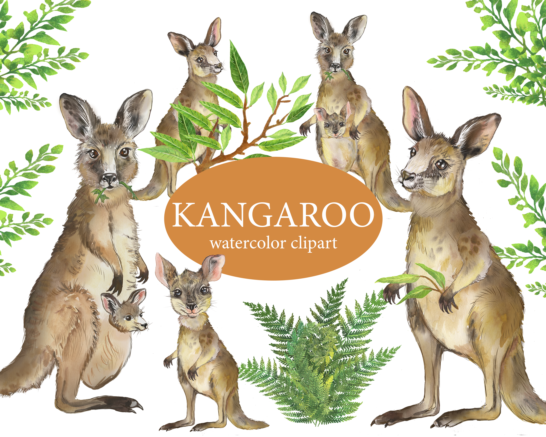 Kangaroo Watercolor Clipart Australian Animal Clipart Mom And Baby Baby Shower Art Png Diy Animal Clipart Baby Shower Art Watercolor Clipart