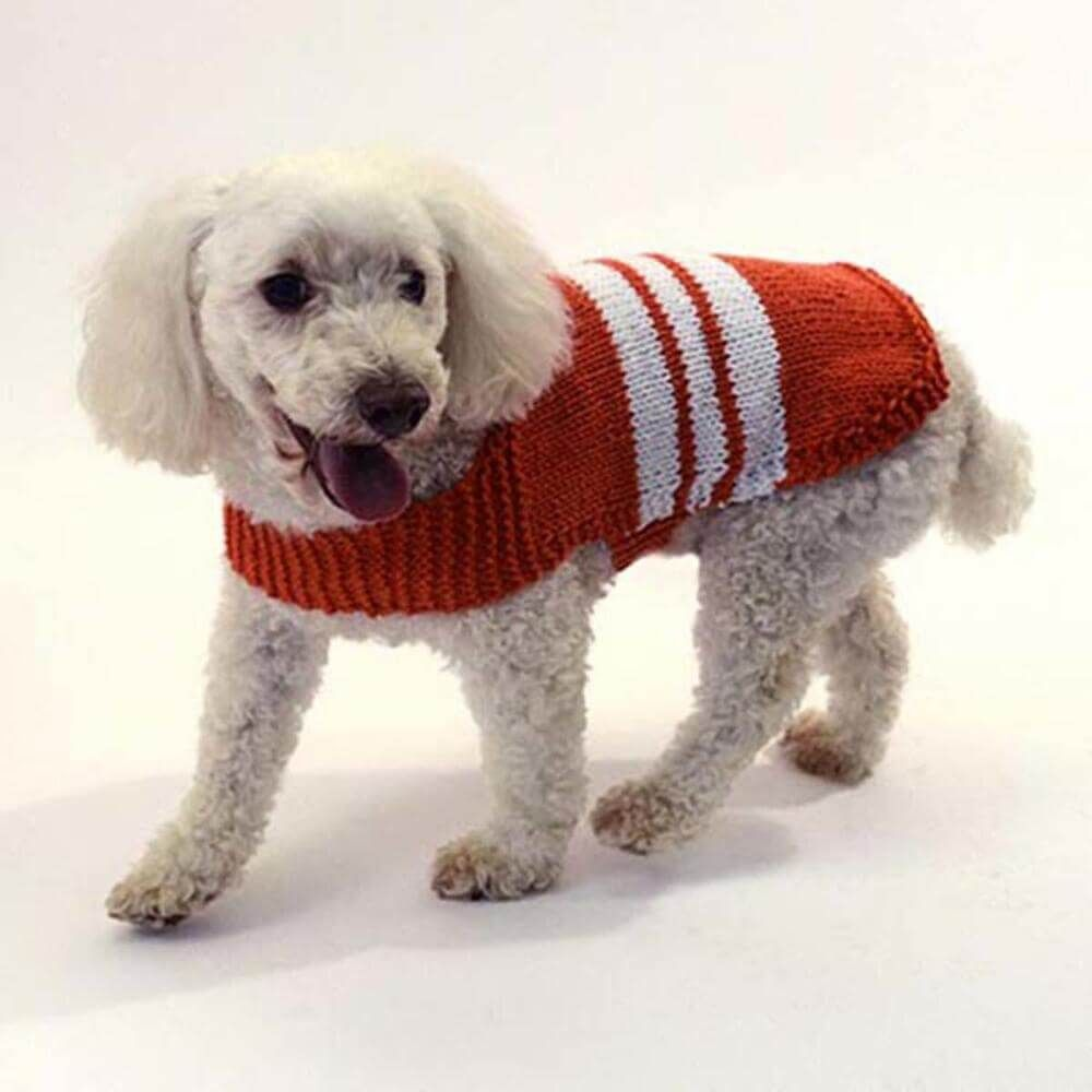 Knit collegiate dog sweater free knitting pattern knitting knit collegiate dog sweater free knitting pattern bankloansurffo Choice Image