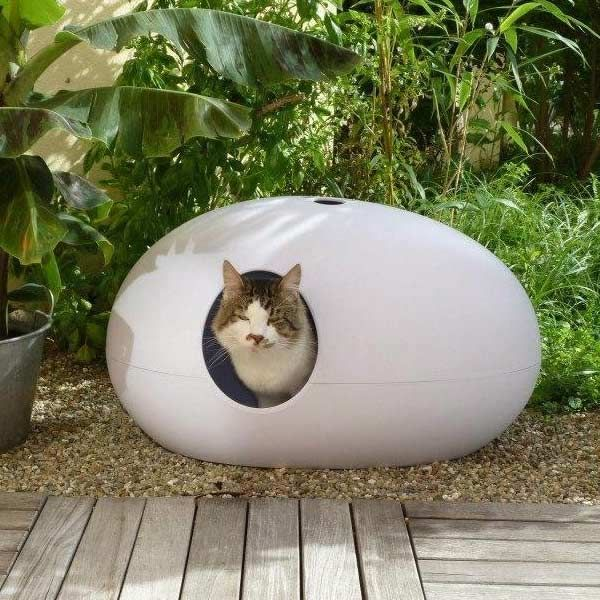 how to keep cats away from plants outdoors