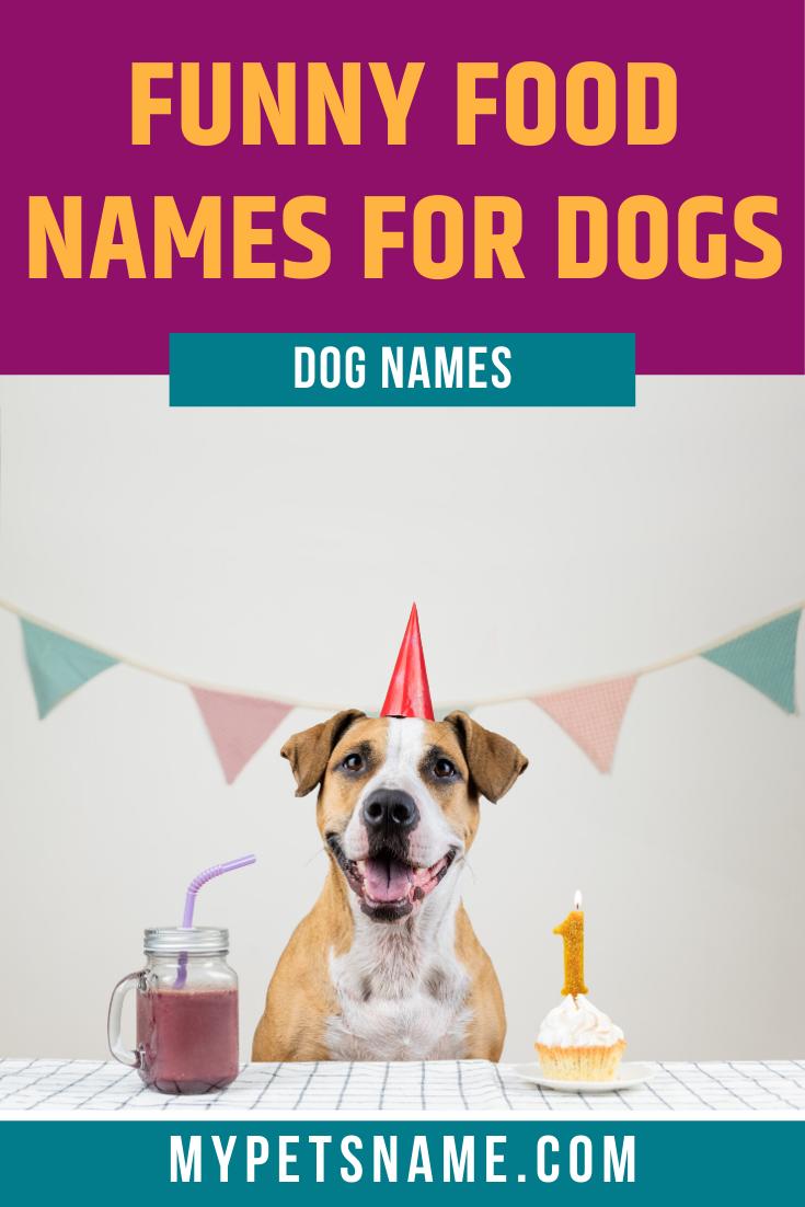 Funny Food Names For Dogs | Funny dog names, Dog names ...